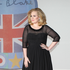 Adele Debuts Baby Angelo at Central Park Zoo, Planning Wedding