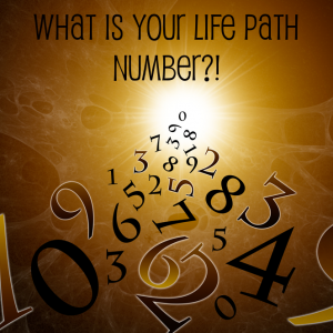 Glynis McCants' Numerology & Life Path Number Meanings 1, 2, 3, 4