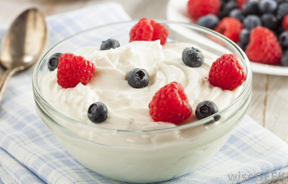 yogurt makes you poop