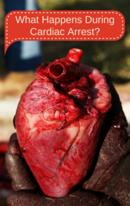 Dr Oz: Exploring The Heart With Ken Jeong & Cardiac Arrest Explained